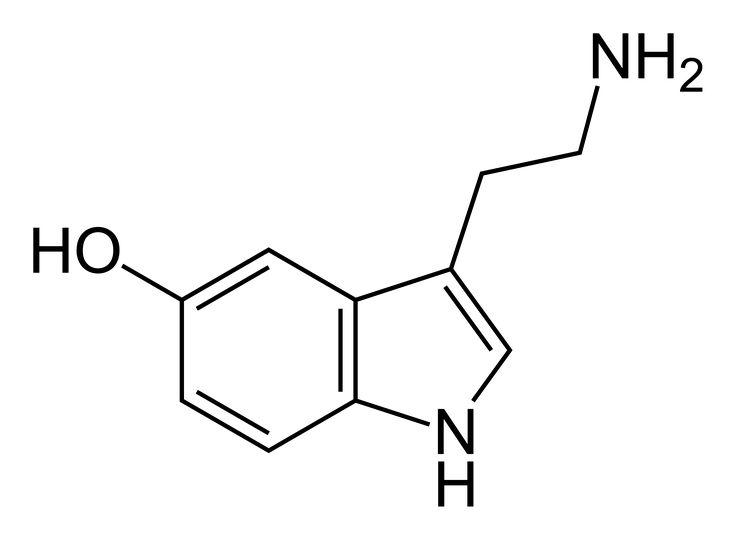 Serotonin Molecule Cute Cartoon Vector Illustration Isolated ...