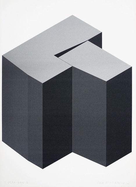 Altxerri  ELENA ASINS  Euskaldun 3, 2001  Impresión digital sobre papel   C-Print on paper  42 x 30 cm