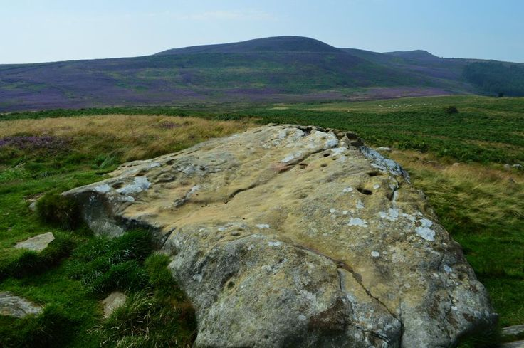 Ancient stones & Heather, cup & ring petroglyphs, Lordenshaws, Simonside, Rothbury, Northumberland #archaeology