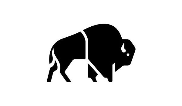 Logo designed by The Consult for outdoor clothing brand Buffalo Systems