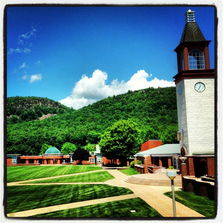 14 Best Quinnipiac University Images On Pinterest