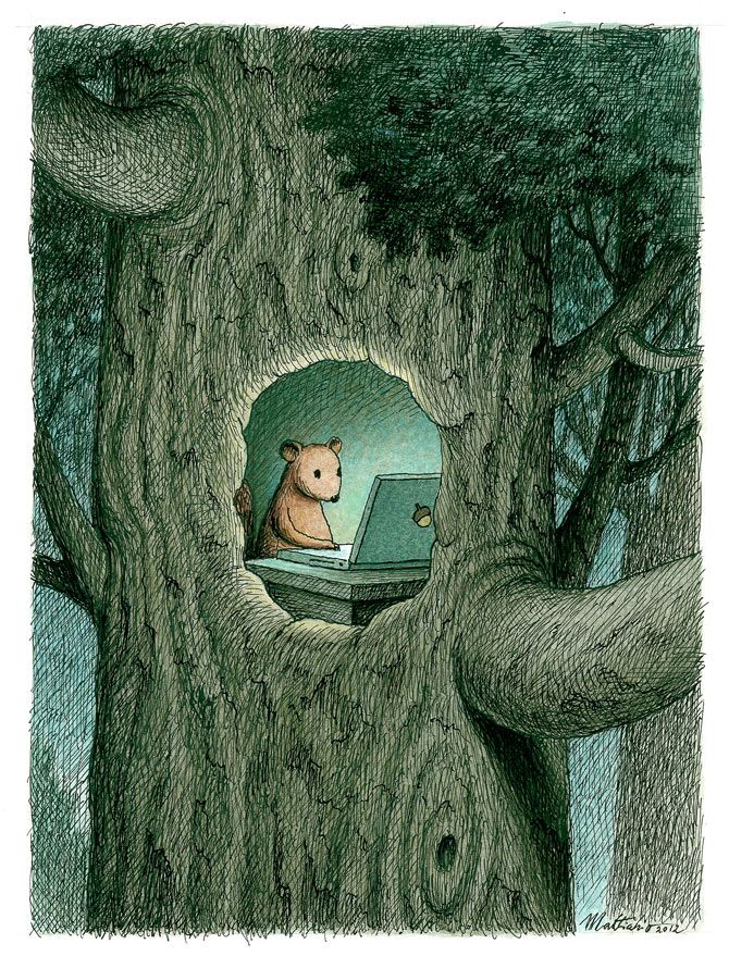 Google search: Hazelnuts - by Franco Matticchio- kind of in love with this adorable squirrel drawing!