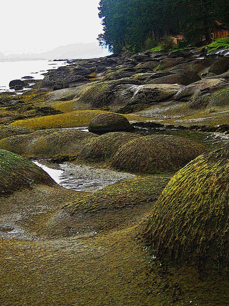 Bumps & Humps, Gabriola Island, BC
