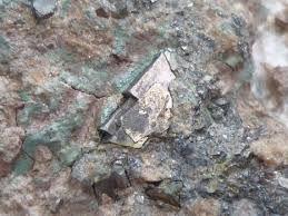 Arsenopyrite, FeAsS,  Moulin Rousset Quarry, Cieux, Haute-Vienne, Nouvelle-Aquitaine, France.  Copyright © Alain Tuel