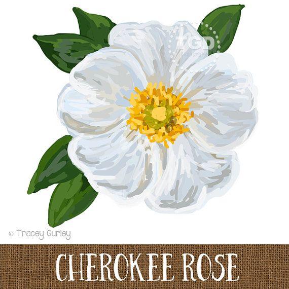 Cherokee Rose Original Art Cherokee Rose by TraceyGurleyDesigns
