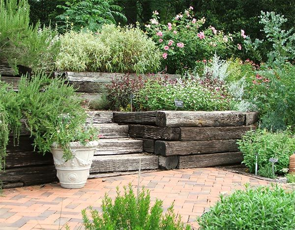 113 Best Images About Herb Garden On Pinterest Gardens