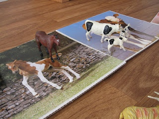 Återanvänd kalender. Matcha djurmodeller med foton av djuren i verkligheten.