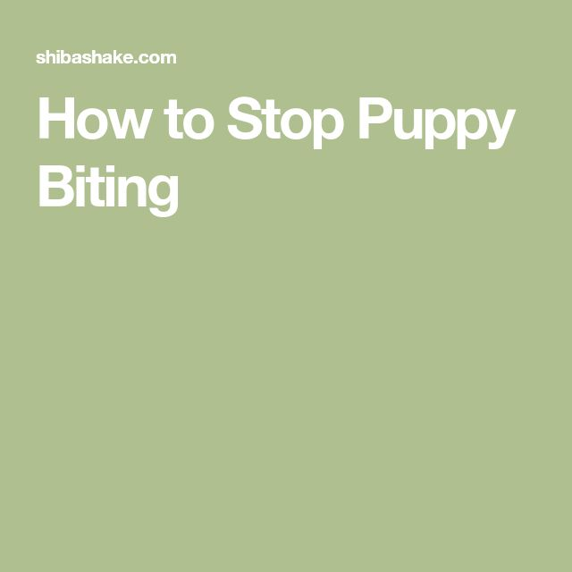 How to Stop Puppy Biting #stoppuppybiting