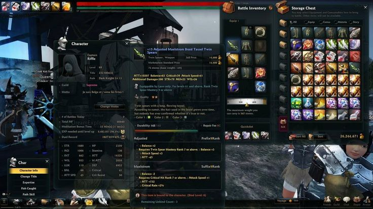 Tracking stats is an integral part of many games. Higher stats are often a sign of commitment to the game, and a sort of achievement in themselves as stats are usually increased by obtaining gear/items that increase in rarity.  This screen cap shows how detailed stats in games are a form of hypermediacy, as the sheer amount of information being shown on the screen almost completely blocks out the game.