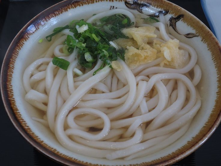 Tuchi kake Udon (a bowl of homemade thick Japanese wheat noodles in soy-flavored soup)