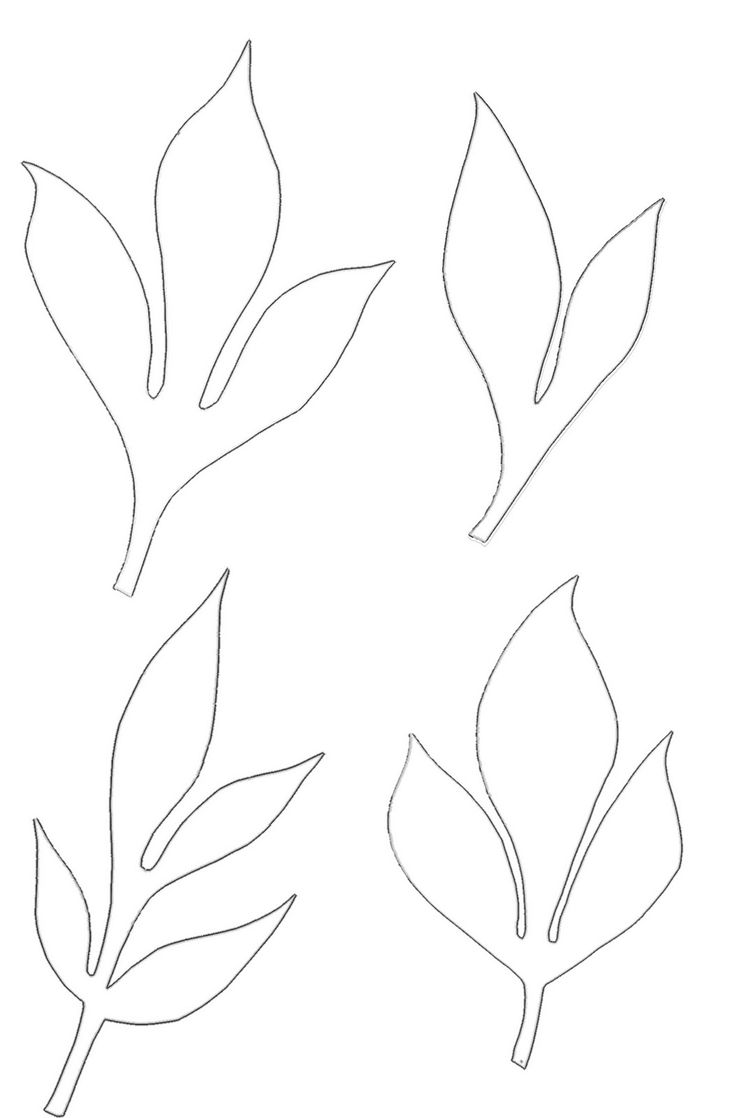 best 25 leaf template ideas only on pinterest leaves template