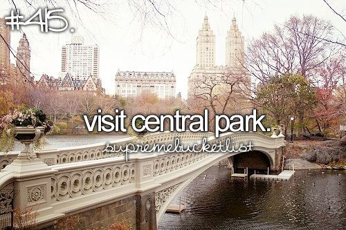 Never been to New York - would love to go there sometime, and see Central Park, and the rest of the city as well!