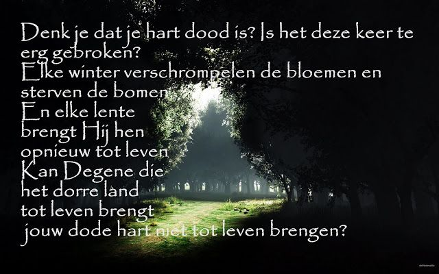 Citaten Quran Gratis : Best nederlandse quotes islam images on pinterest