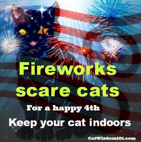 july 4th fireworks death