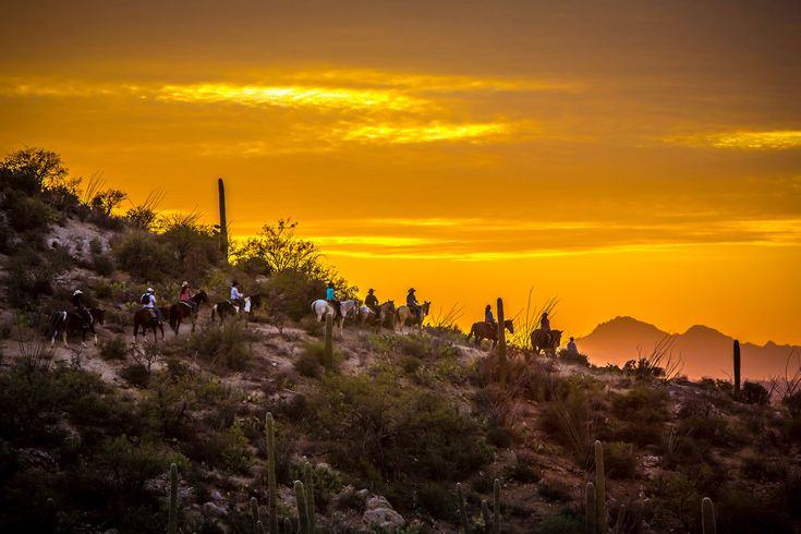 Plan your dude ranch vacation at Tanque Verde Ranch in Arizona - the perfect destination for all of your family ranch resort and ranch holiday needs.