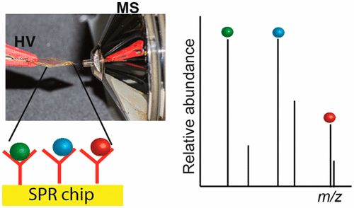 #AChem: Biochip Spray: Simplified Coupling of Surface Plasmon Resonance Biosensing and Mass Spectrometry #MassSpec