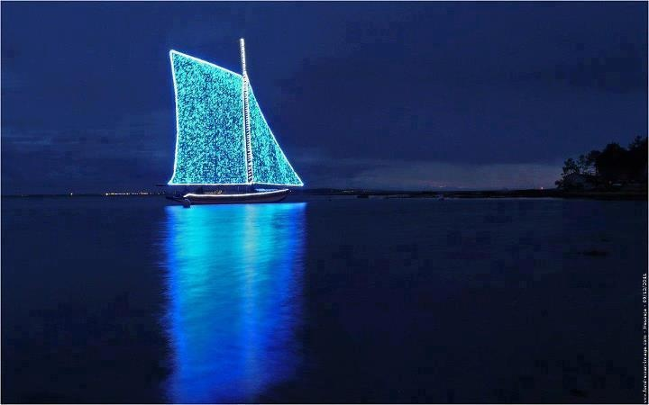 After dark sailing. This is going on my bucket list. Imagine swimming alongside and looking up through the water.