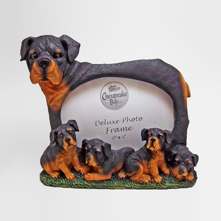 Rottweiler Dog and Puppies Figurines Polyresin Picture Photo Frame - PFD711L - Rottweiler dog and puppies polyresin dog figurines table or desk photo frame with easel back. Holds one 6 x 4 picture Great gift for your dog lover friend or yourself - FOR SALE at www.ClaudiasBargains.com
