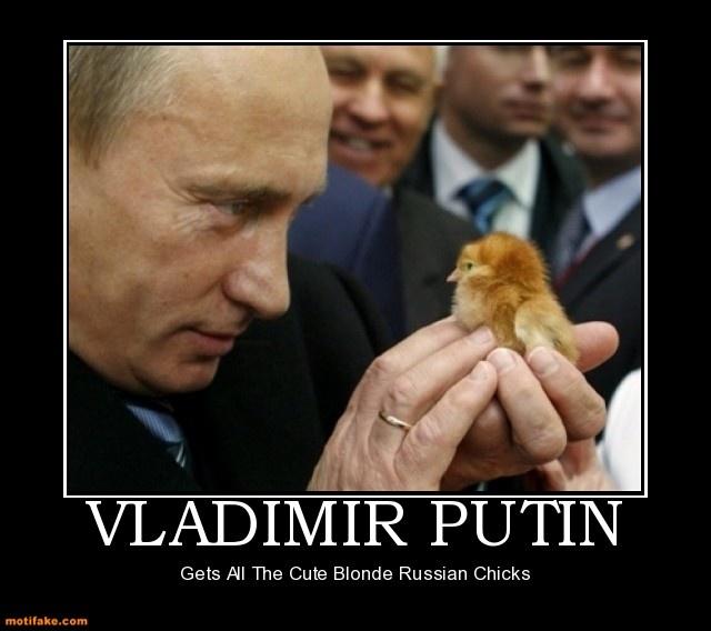 Strangely Captivating Photos Of Vladimir Putin Animals A Brief