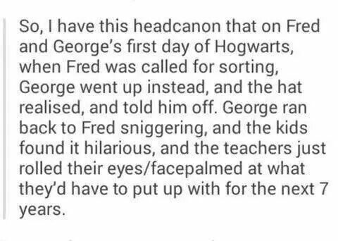 Perfect. A Fred and George headcanon that doesn't make me cry