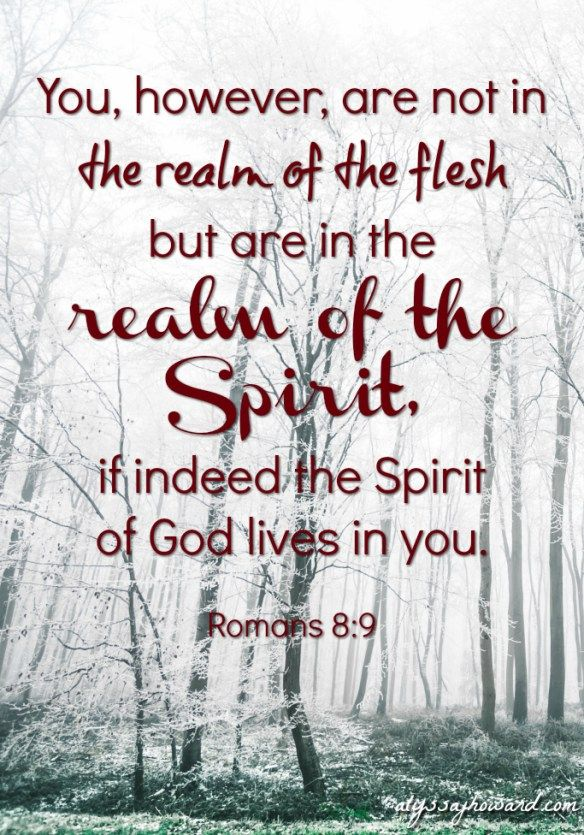"""When discerning if the Holy Spirit is the one directing you, check how """"in the flesh"""" you are. Are feelings like fear of man or selfish gain motivating you? If so, the flesh is influencing your direction."""