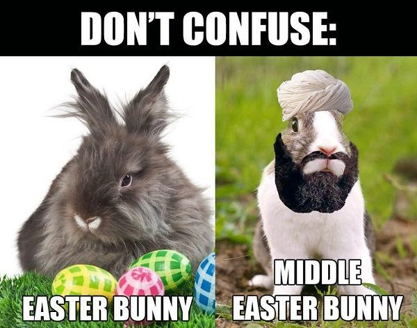 Happy Easter Memes Funny Easter Bunny Pictures Easter Humor Funny Memes