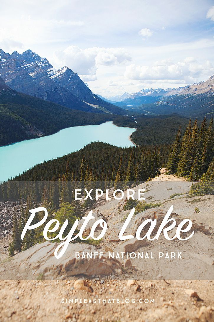5 Locations to Discover Alongside the Icefields Parkway - easy as that. See more at the photo link