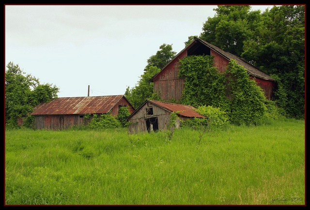 Abandoned Farm Buildings - Imlay City, Michigan ...
