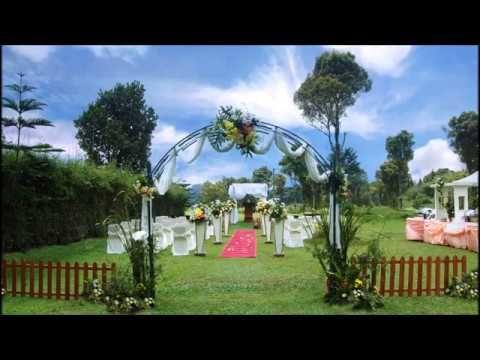 Dekorasi Wedding Outdoor Mewah dan Unik