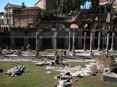 La Roma di Cesare. Foro di Cesare, colonne del tempio di Venere Genitrice, protettrice della gens Iulia.