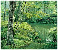 "Koke-dera (Saiho-ji) Temple in Kyoto.    AKA ""The Moss Temple."""