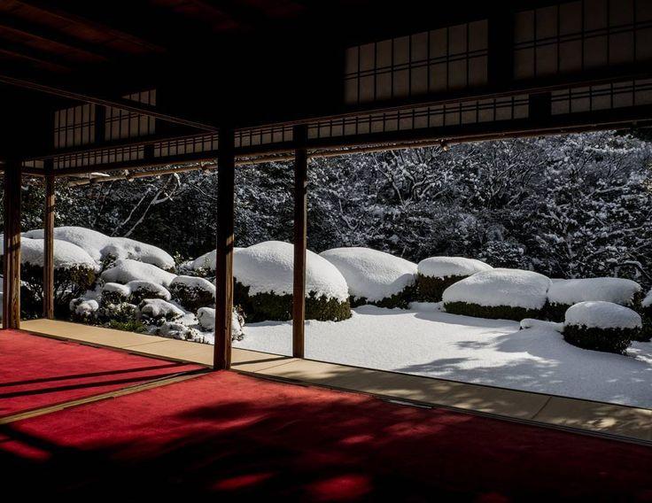 先週の詩仙堂。さつきの刈り込みの上にわたぼうしのように雪が積もってました。#京都 #雪景色 #詩仙堂丈山寺 #kyotocity #sisendo #一乗寺 #社寺 #庭園 #japanesegarden #olympus #olympusem10markⅱ