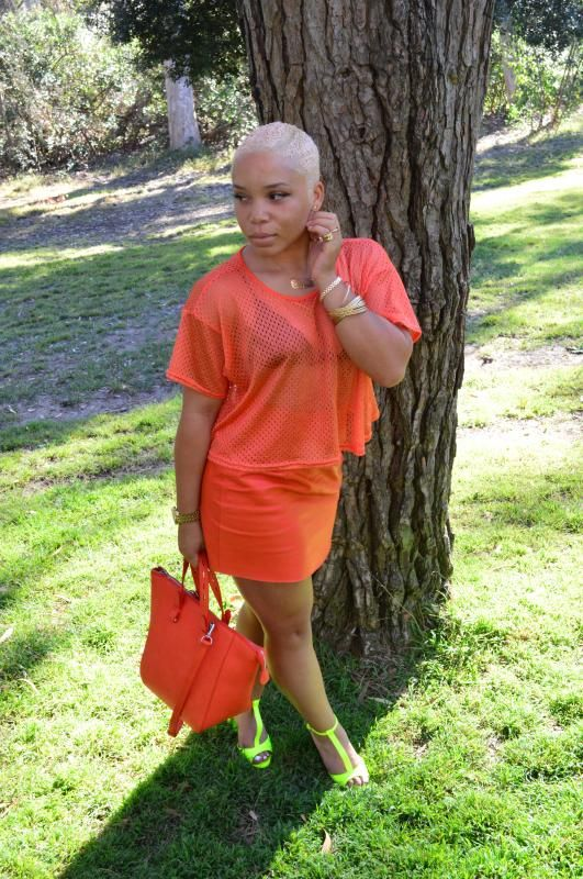 Bald Black Beauties : Photo