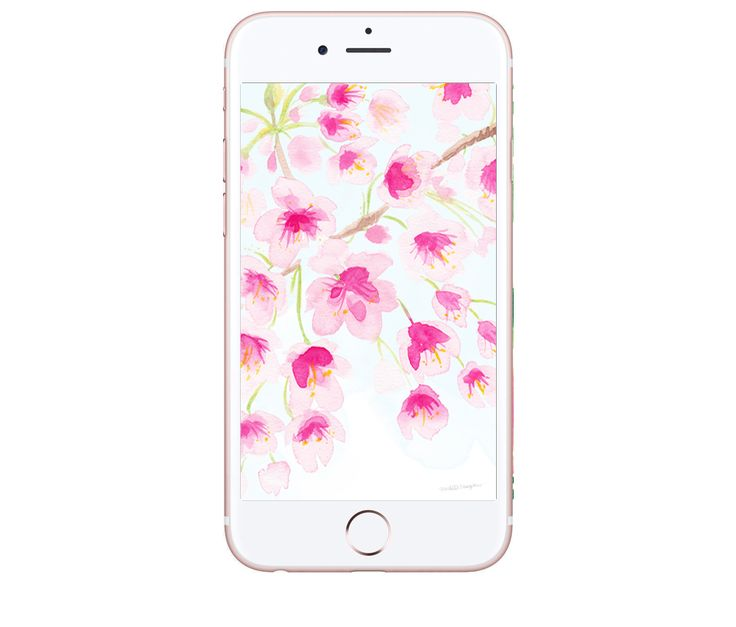 FREE Hand Painted Watercolor Cherry Blossoms Floral Wallpaper Desktop Downloads by Michelle Mospens. Find wallpaper for your phone, ipad, computer, and facebook. | Mospens Studio