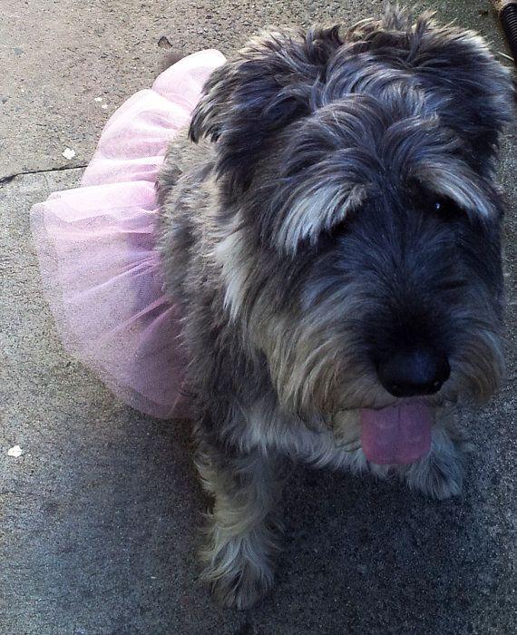 Pink dog tutu dog costume pet clothing by GrannyJack on Etsy