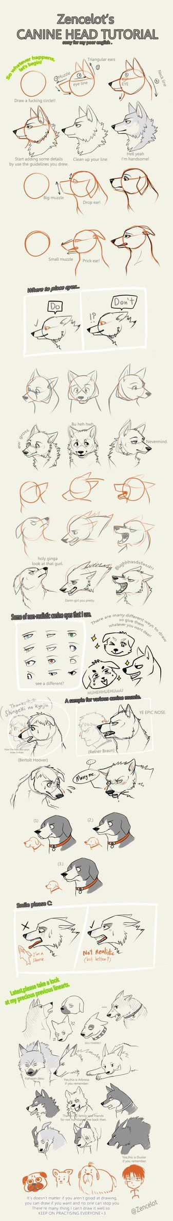 Zency's Canine Head Tutorial by Zencelot