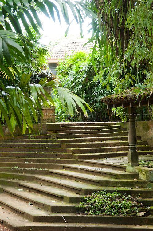 Mejores 8 im genes de solados en pinterest paisajismo for Solados para jardines