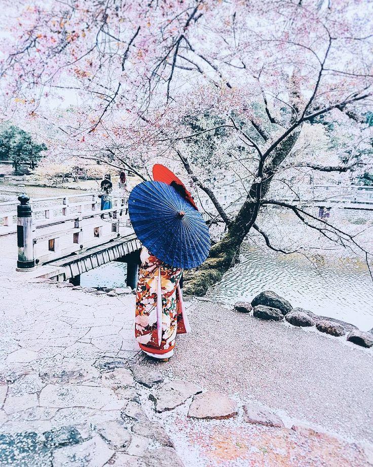 32 отметок «Нравится», 6 комментариев — Iullia (@iuliipachinit) в Instagram: «Ходят легенды, что рис в Японии невероятно хорош. Словно тебя боженька погладил по голове. Или ты…»