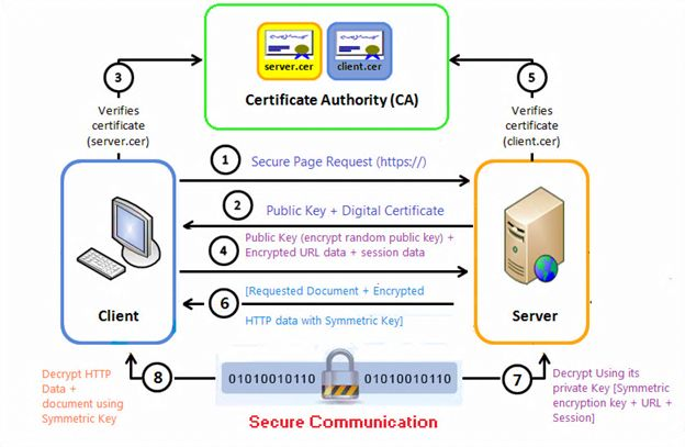 How To Get Public Key From Certificate In Java