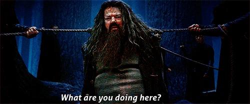Com Rúbeo Hagrid, aprendi a não ter medo dos animais ferozes, os seres humanos são muuito piores