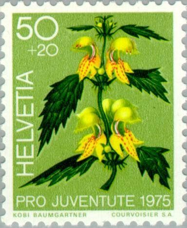 Znaczek: Yellow Archangel (Lamium galeobdolon) (Szwajcaria) (Pro Juventute: Ornamental plants of the forest, stamp day) Mi:CH 1065,Sn:CH B437,Yt:CH 997,Zum:CH J255