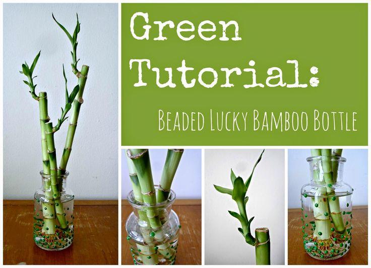 Beaded Glass Bottle Lucky Bamboo Lucky Bamboo Pinterest Glass Bottles Bottle And Glasses