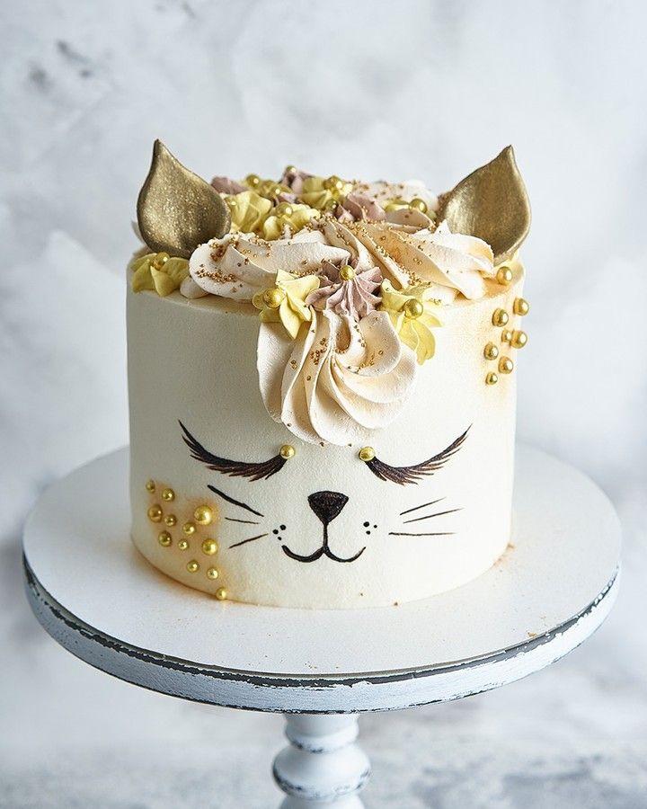 котик торт фото