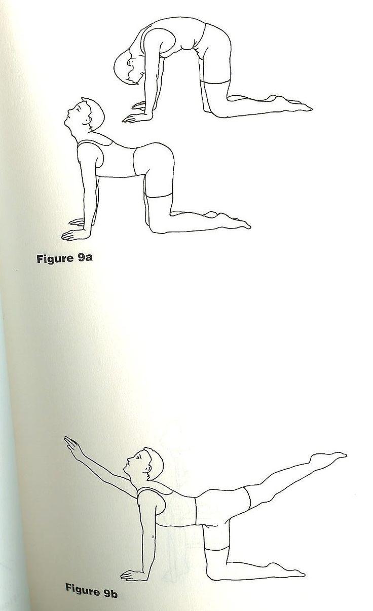 17 Best Exercises For Knee Images On Pinterest Knee