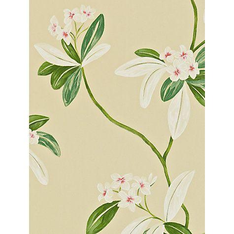 Buy Sanderson Oleander Wallpaper Online at johnlewis.com