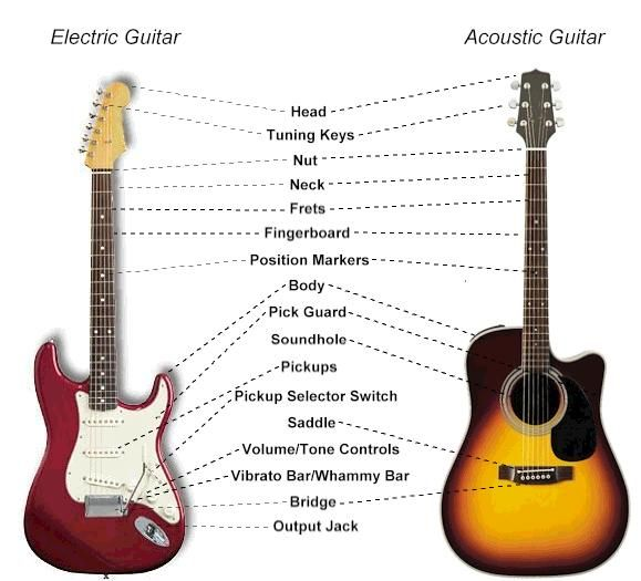 Guitar Anatomy Guide Every Part Of The Guitar Explained Guitar Music Theory Guitar Electric Guitar