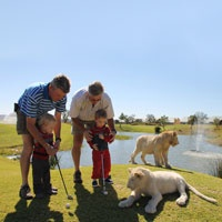 Golfing with the kids (and the Lions) at Protea Hotel Ranch Resort