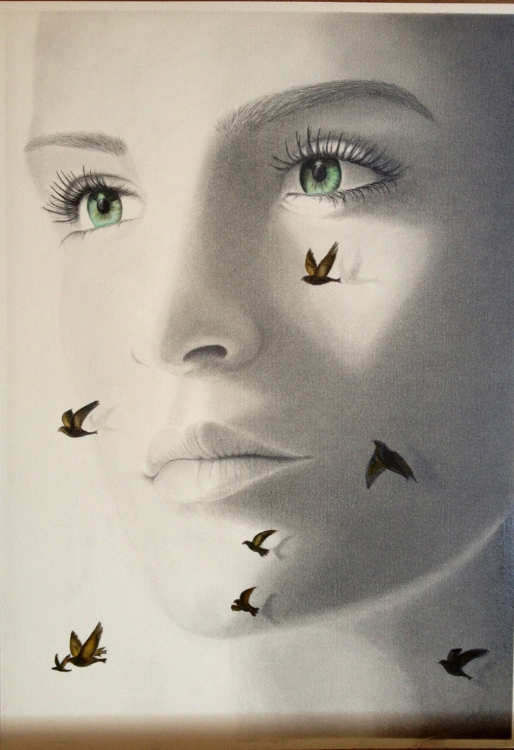Graphite drawing with watercolour - Gillian Buckley Artist