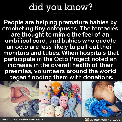 "did-you-kno: ""People are helping premature babies by crocheting tiny octopuses. The tentacles are thought to mimic the feel of an umbilical cord, and babies who cuddle an octo are less likely to pull..."