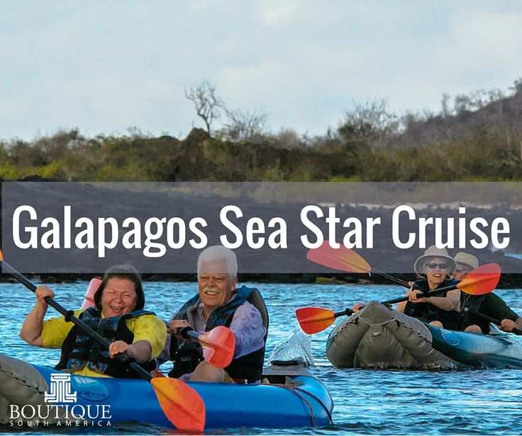 Explore Galapagos Sea Star Cruise here: http://www.boutiquesouthamerica.com.au/product/galapagos-sea-star-journey-cruise/